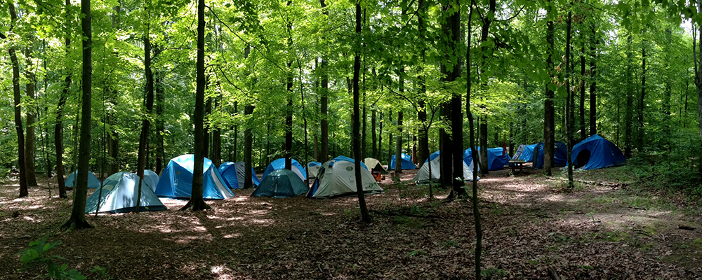 camping in the woods. Wonderful The And Camping In The Woods S